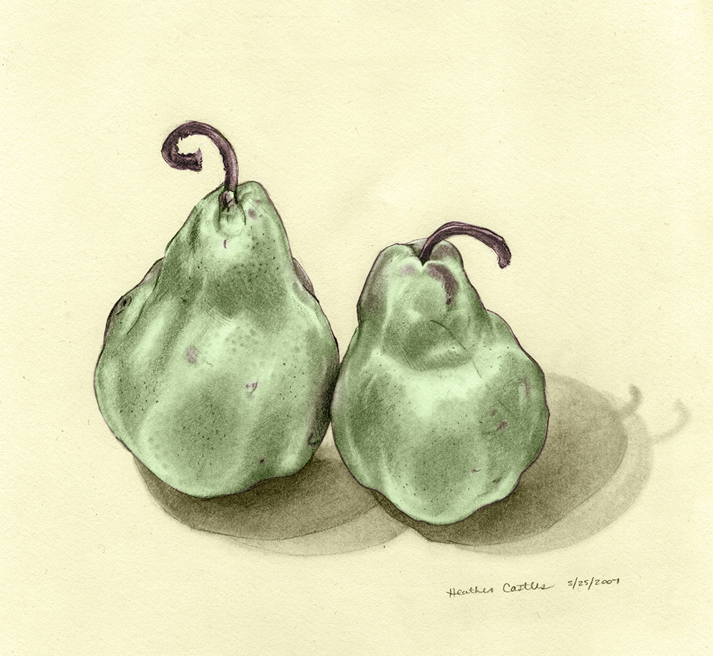 Heather Castles pencil drawing digital colour pears