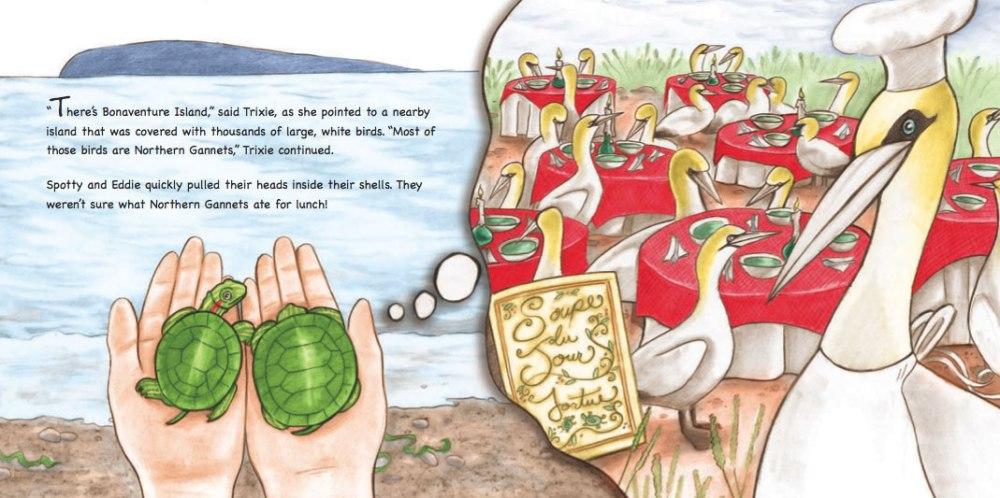 Heather Castles pencil digital colour painting children's book illustration turtles
