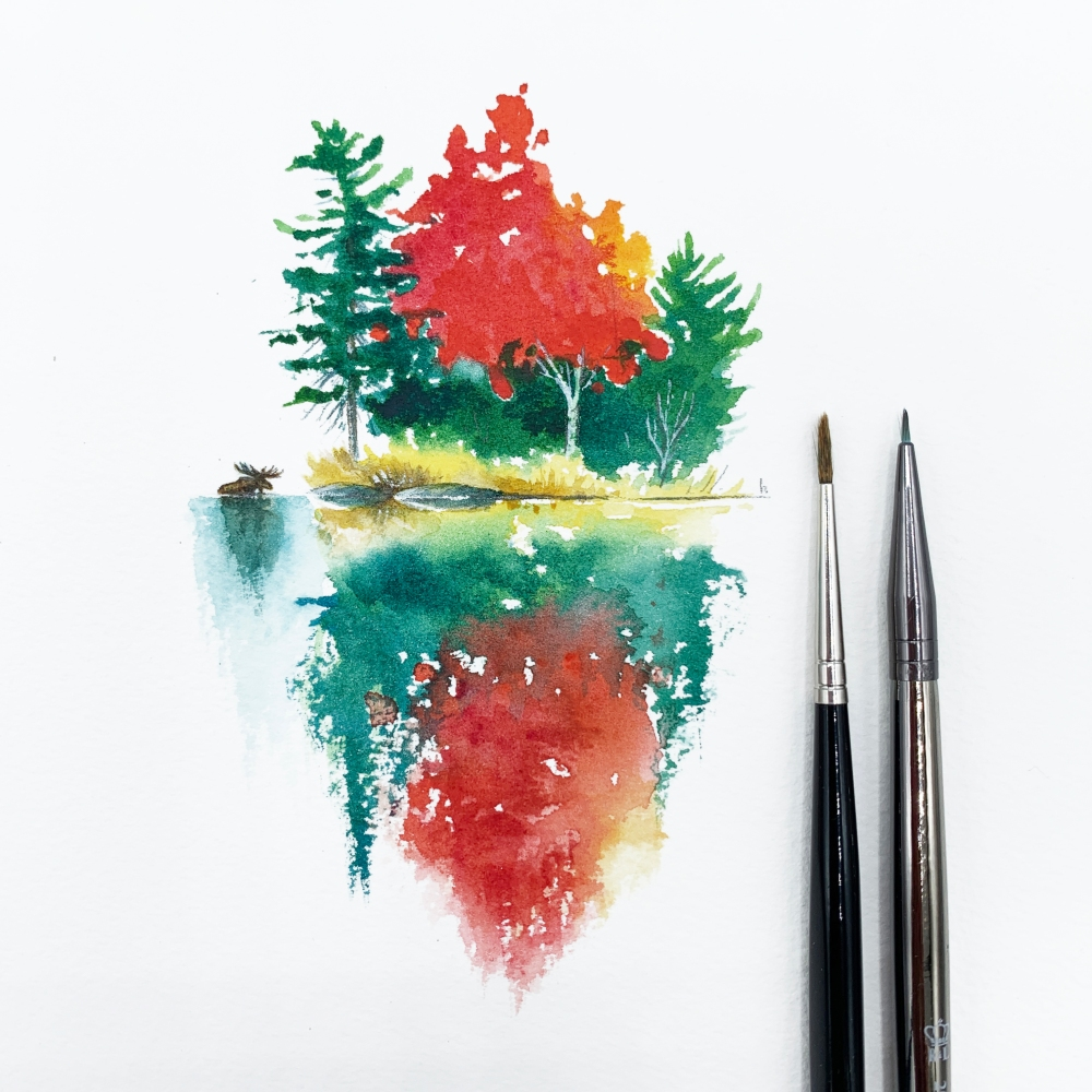 watercolour painting algonquin canada moose autumn red maple